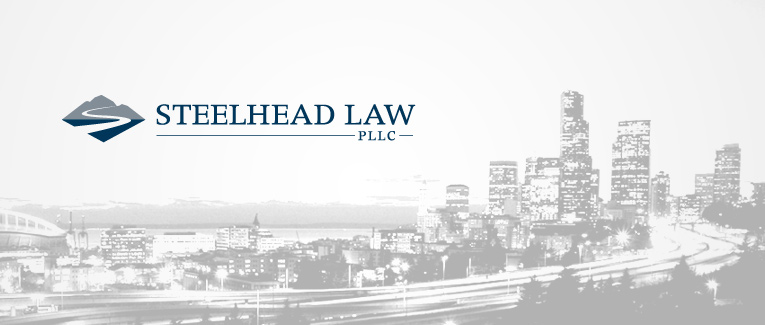 Punctum Design | Steelhead Law